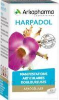 ARKOGELULES HARPAGOPHYTON, 150 gélules à Oloron Sainte Marie