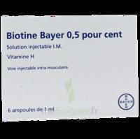 BIOTINE BAYER 0,5 POUR CENT, solution injectable I.M. à Oloron Sainte Marie