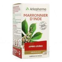 ARKOGELULES MARRONNIER D'INDE, gélule à Oloron Sainte Marie