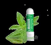 PURESSENTIEL RESPIRATOIRE Inhalation nasal 19 huiles essentielles à Oloron Sainte Marie