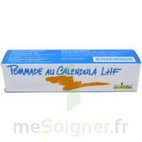 CALENDULA LHF POM T/20G à Oloron Sainte Marie