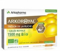 Arkoroyal Gelée royale bio 1500 mg Solution buvable 20 Ampoules/10ml à Oloron Sainte Marie