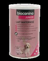 Biocanina Lait poudre maternisé B/400g à Oloron Sainte Marie